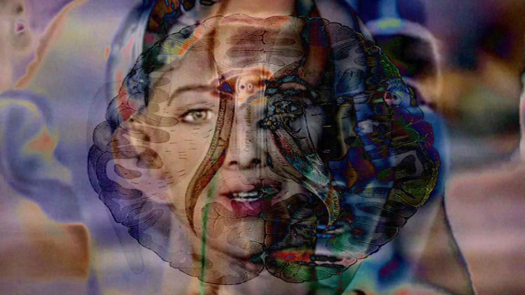 Le paradis n'est pas artificiel (2016)